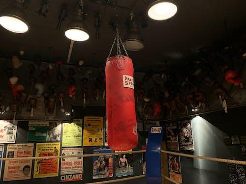 Photos gratuites de boxe, punching-ball