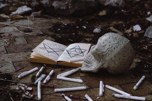 Fotos de stock gratuitas de bruja artesanal, calavera, concepto, de miedo