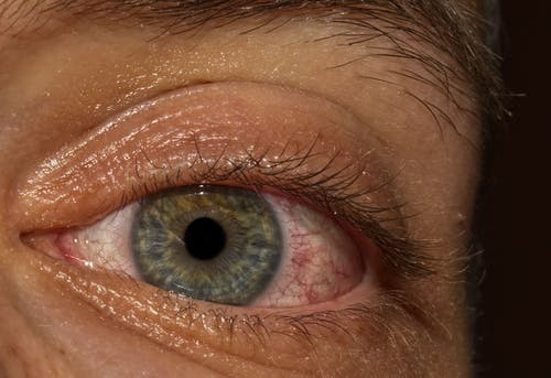 Бесплатное стоковое фото с зеленые глаза, красивые глаза