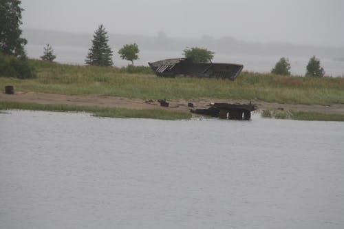 Free stock photo of boat, rain