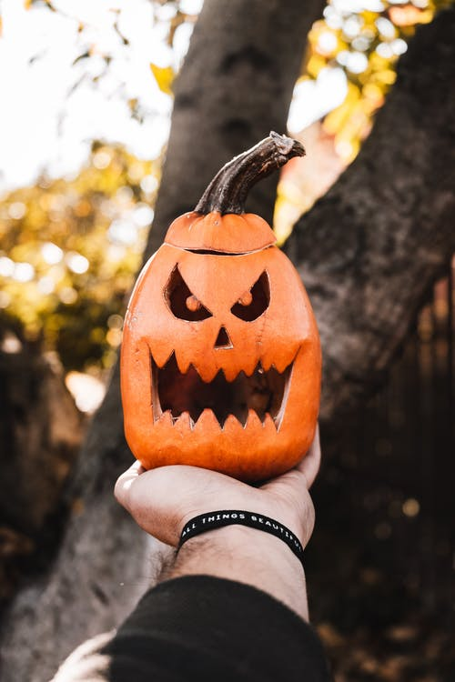 Photo of Jack-O'-Lantern on Person's Hand
