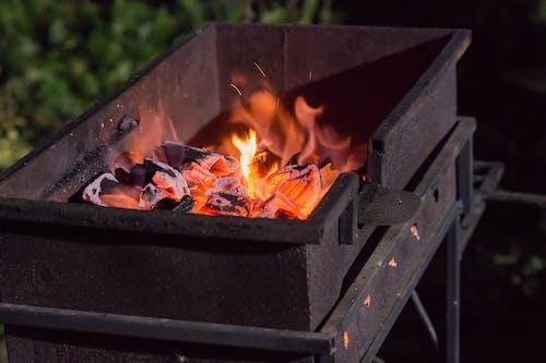 바비큐, 불, 불씨의 무료 스톡 사진