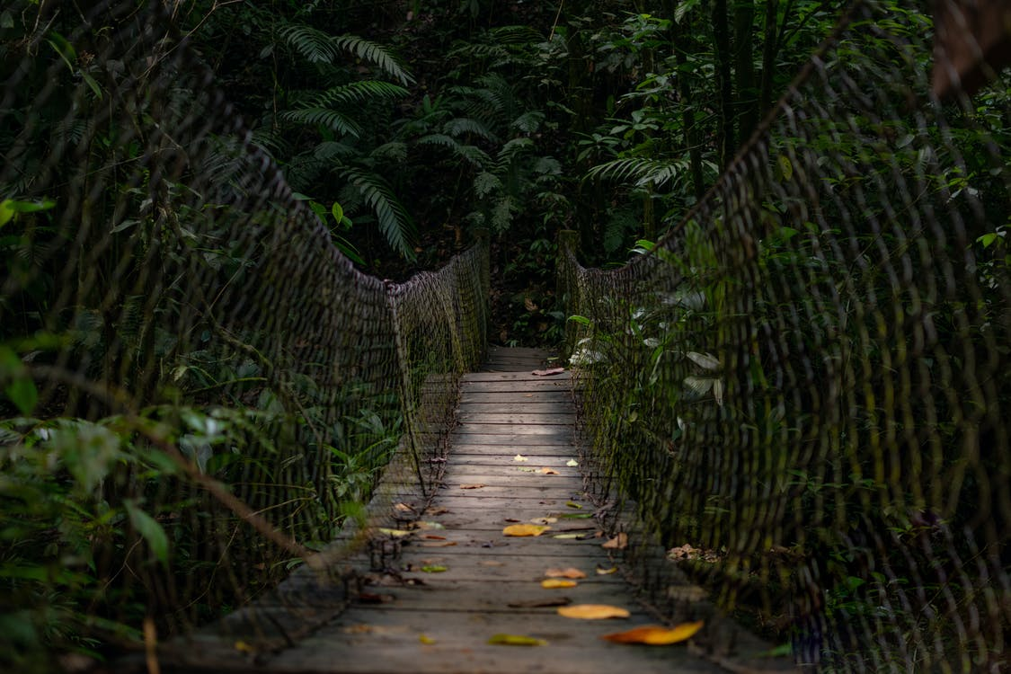 chodnik, drewniany most, fechtować