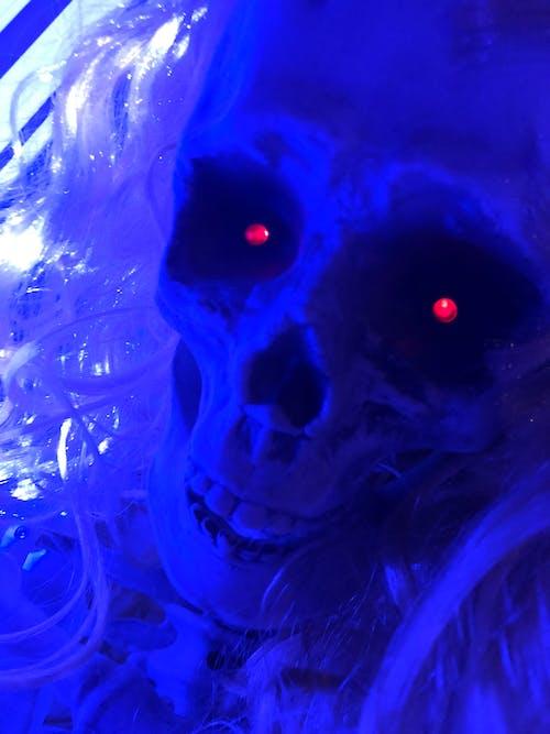 Ảnh lưu trữ miễn phí về lễ hội Halloween