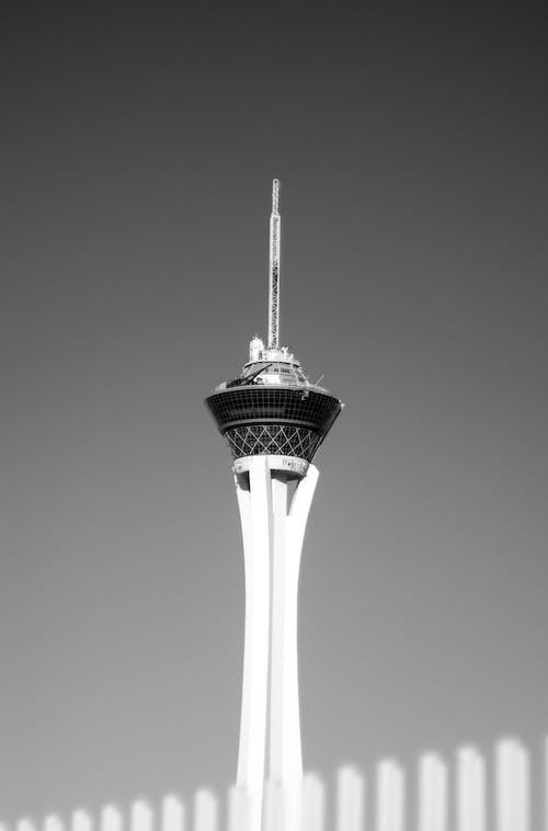 Základová fotografie zdarma na téma černobílý, jednobarevný, mrakodrap, nejvyšší