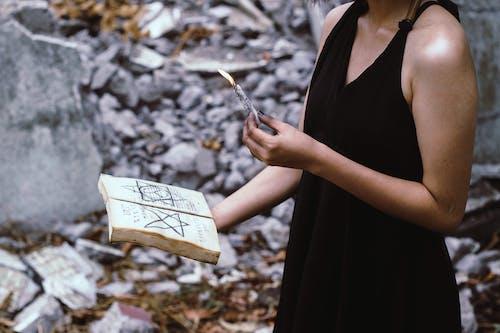 Foto stok gratis api, berfokus, biasa saja, Book