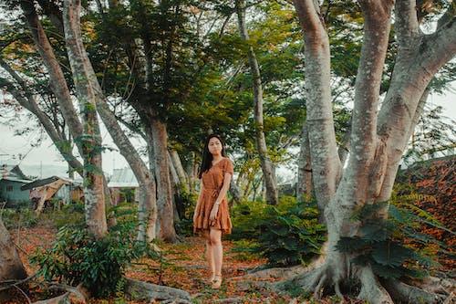 Ağaç dalları, ağaçlar, aşındırmak, Asyalı kadın içeren Ücretsiz stok fotoğraf