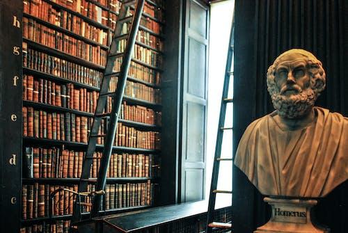 Gratis arkivbilde med bibliotek, bokhylle, gamle bøker, statue