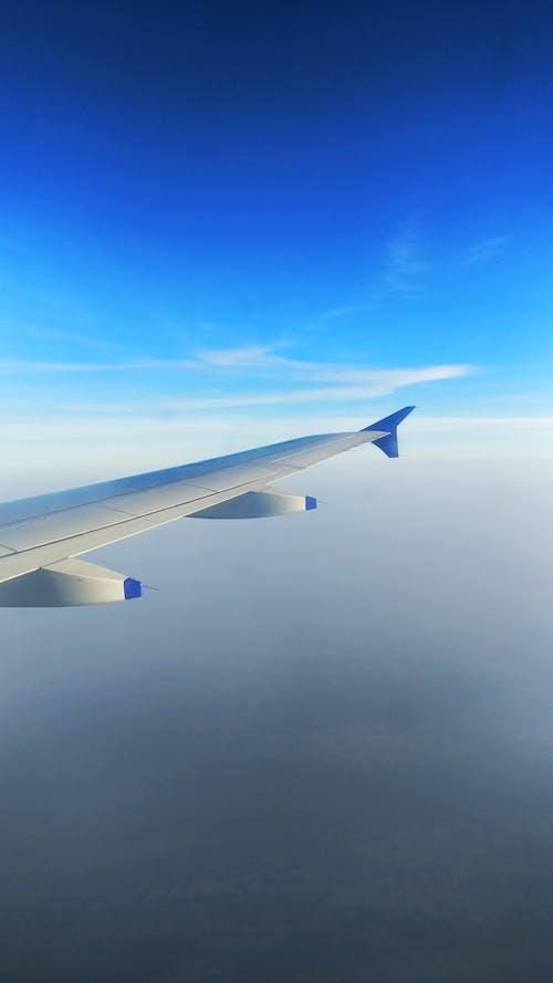 Free stock photo of aeroplane, airplane window, cloud, glass window