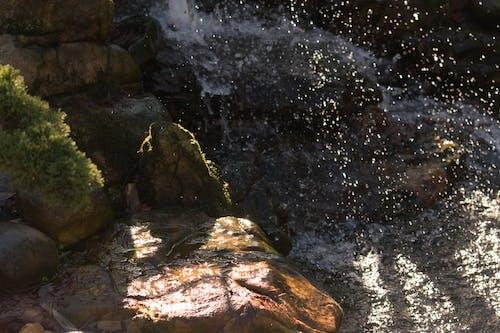 คลังภาพถ่ายฟรี ของ ทัศนียภาพ, ธรรมชาติ, น้ำ, น้ำตก