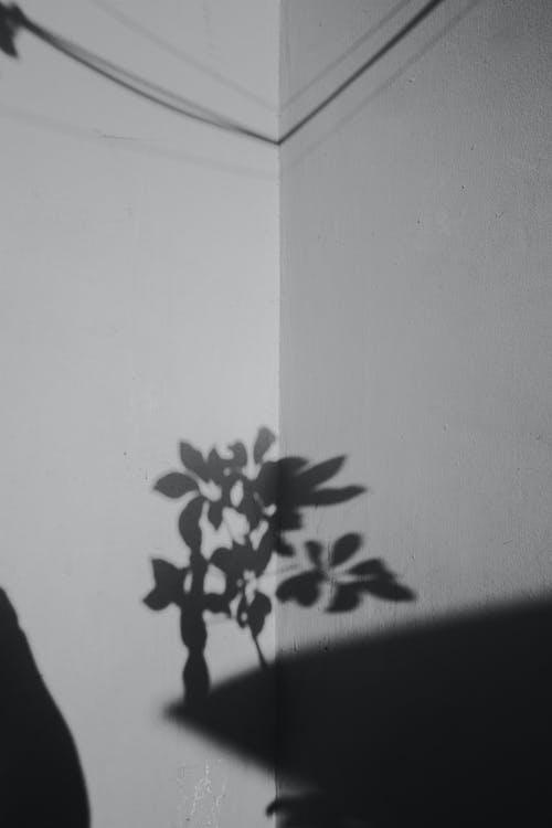 açık hava, beton, beton duvar, boyalı içeren Ücretsiz stok fotoğraf