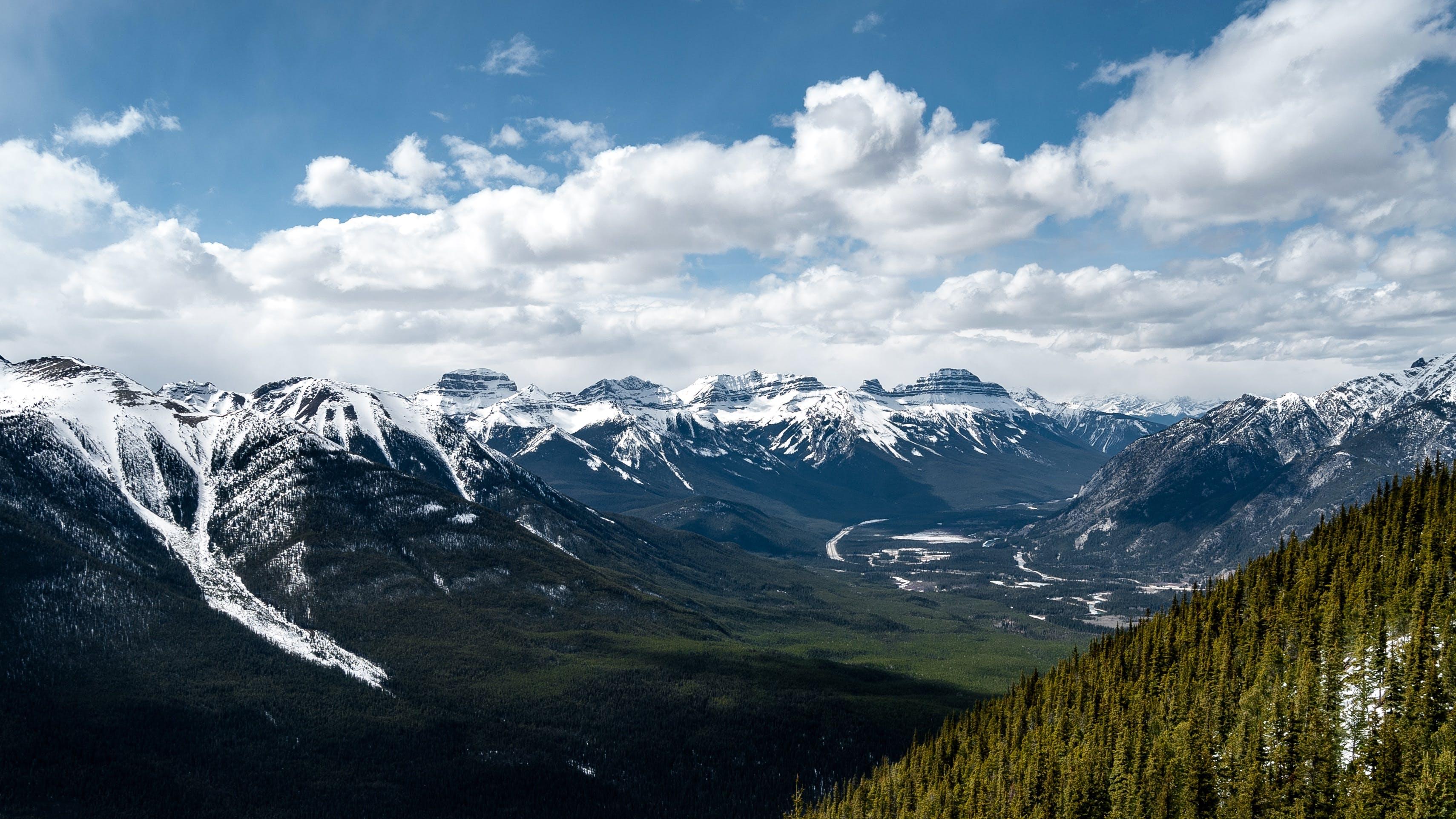 Základová fotografie zdarma na téma denní světlo, dobrodružství, hory, jehličnan