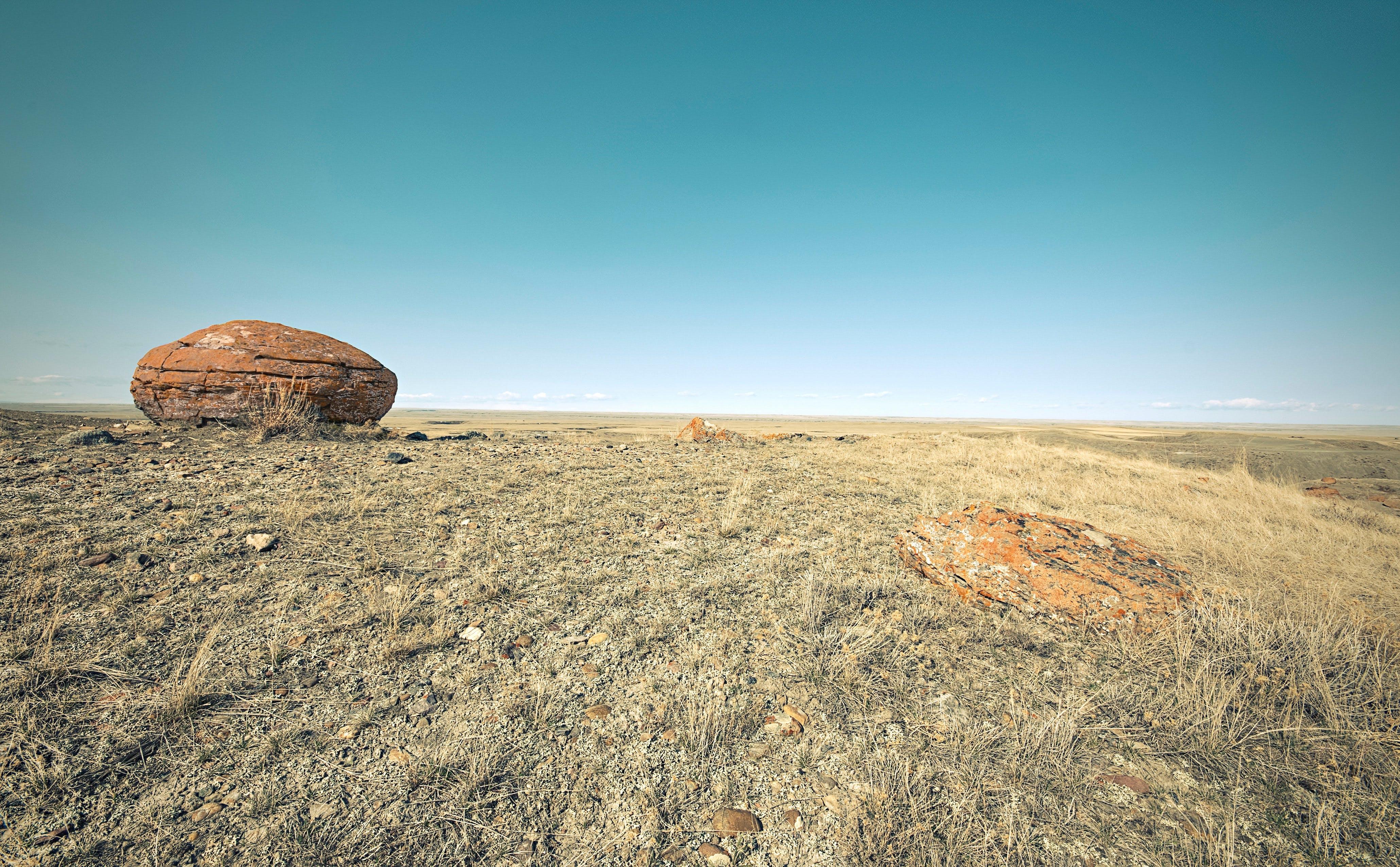 Brown Rock on Green Grassland