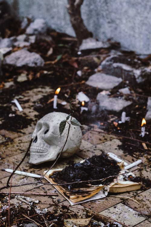 Burnt Book Near Skull