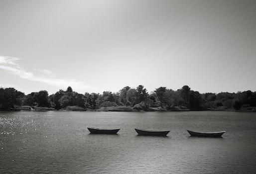 Free stock photo of black-and-white, boats, lake, three