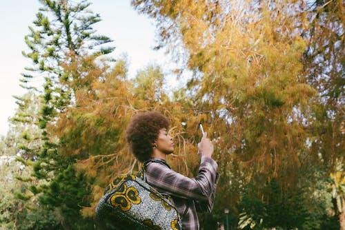 akıllı telefon, aygıt, bayan, bitki içeren Ücretsiz stok fotoğraf