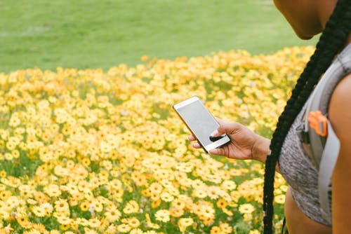Photo Of Person Taking Picture Of Flowers