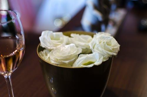 Free stock photo of arrangement, beautiful, beauty, bouquet