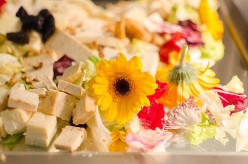 Free stock photo of appetizing, background, cake, calcium