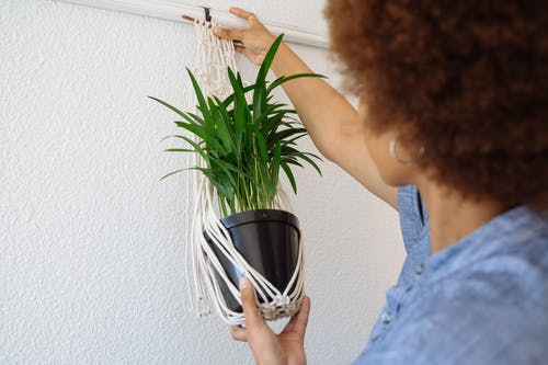 Woman Hanging A Pot Plant
