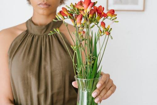 Kostnadsfri bild av blommor, blomning, dagsljus, dekoration