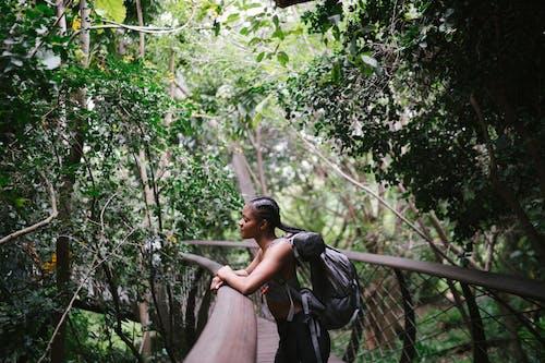 คลังภาพถ่ายฟรี ของ กระเป๋าเป้, กลางแจ้ง, การท่องเที่ยว, การผจญภัย