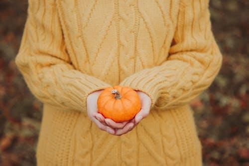 Бесплатное стоковое фото с Взрослый, вязаный свитер, глубина резкости, еда