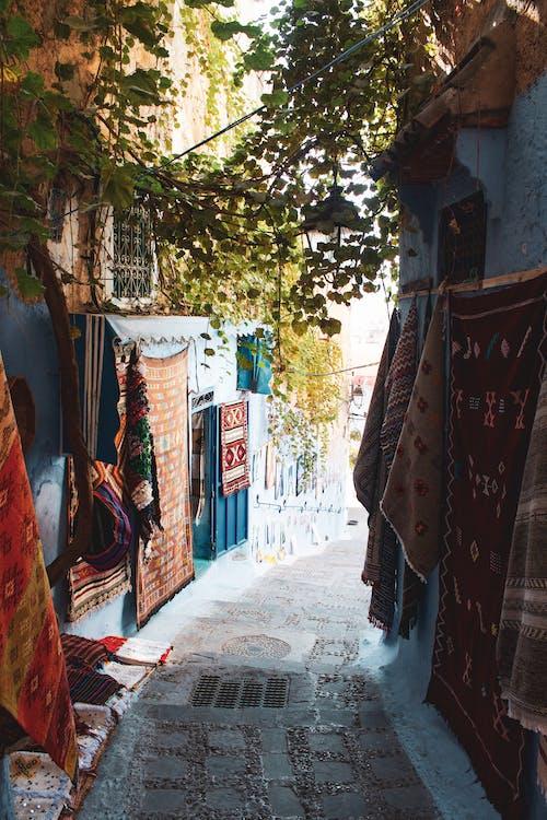 Základová fotografie zdarma na téma Afrika, chefchaouen, maroko, ulička