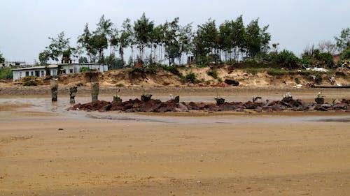 Foto stok gratis fotografi, fotografi alam, fotografi lanskap, laut pantai