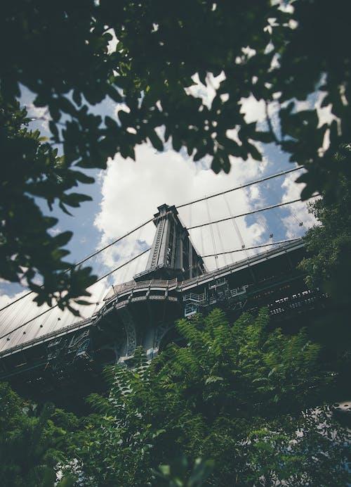 Základová fotografie zdarma na téma architektura, budova, cestování, denní světlo