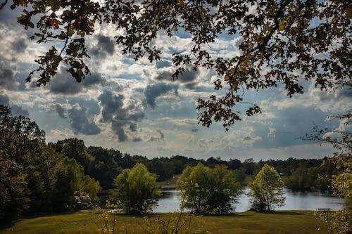 Ảnh lưu trữ miễn phí về bầu trời, bối cảnh, cây, công viên