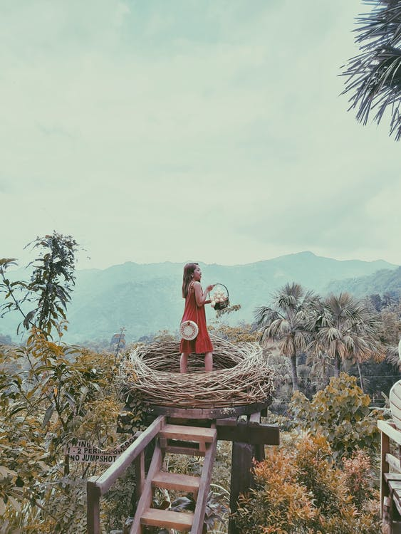 Woman in Red Dress Standing on Bird's Nest