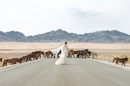 Woman In The Middle Of The Road With Horses Crossing