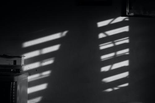 Monochrome Photo of Shadow on Wall