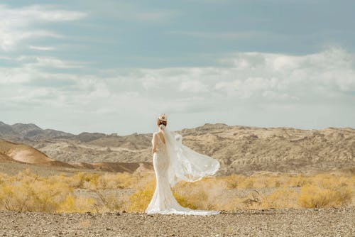 Бесплатное стоковое фото с белое платье, вид сзади, горячий, дневной свет