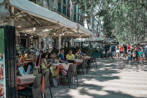 兰布拉, 城市, 城市生活, 巴賽隆納 的 免费素材照片