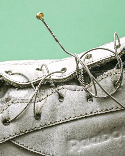 คลังภาพถ่ายฟรี ของ รองเท้าผ้าใบ, หนังสัตว์, เชือกผูกรองเท้า