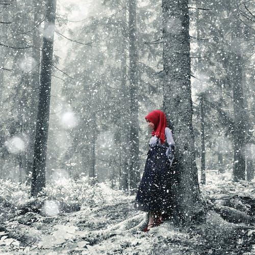 Ingyenes stockfotó erdő, szépségmodell, tél témában