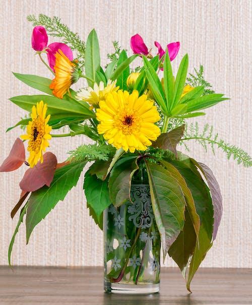 노란 꽃, 부케, 정물의 무료 스톡 사진