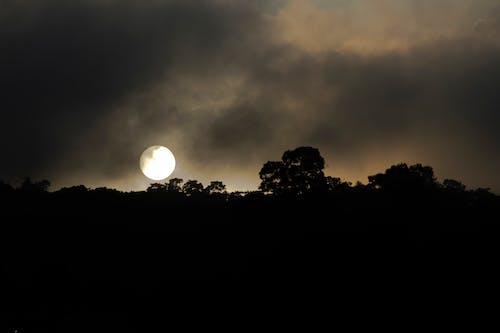 Základová fotografie zdarma na téma odpoledne, silueta, siluety, temné mraky
