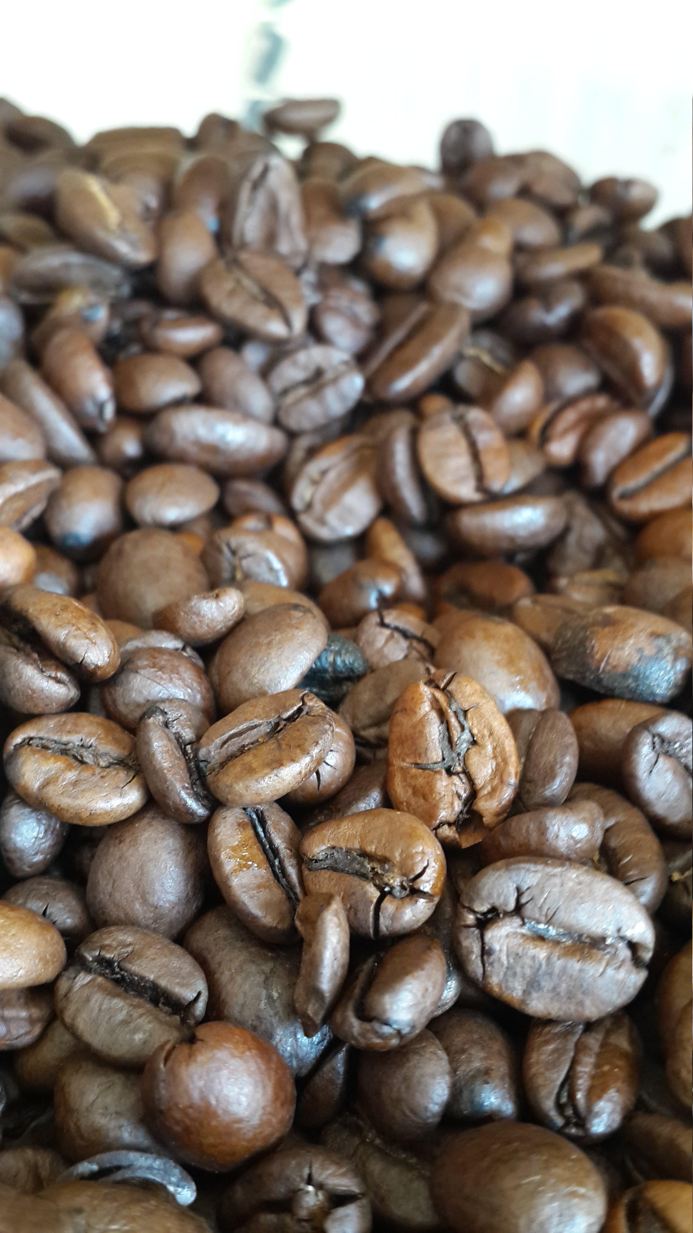 Základová fotografie zdarma na téma černá káva, káva, kavárna, kávová zrna