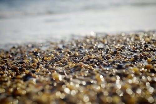 #playa, #포르투갈의 무료 스톡 사진