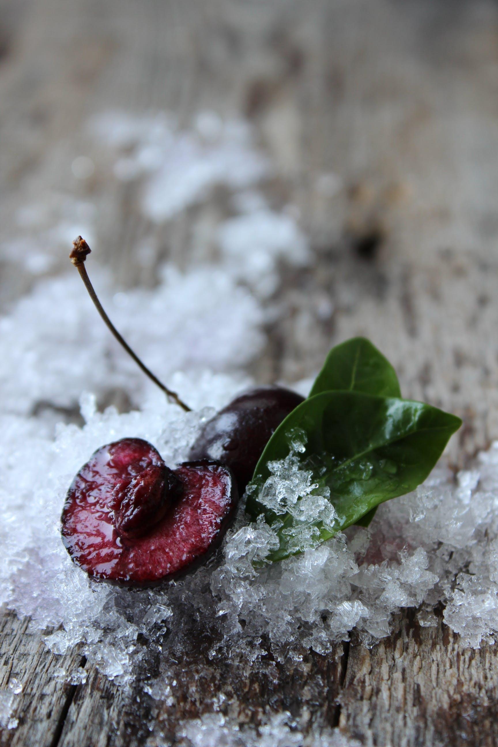Close-up of Frozen Leaf
