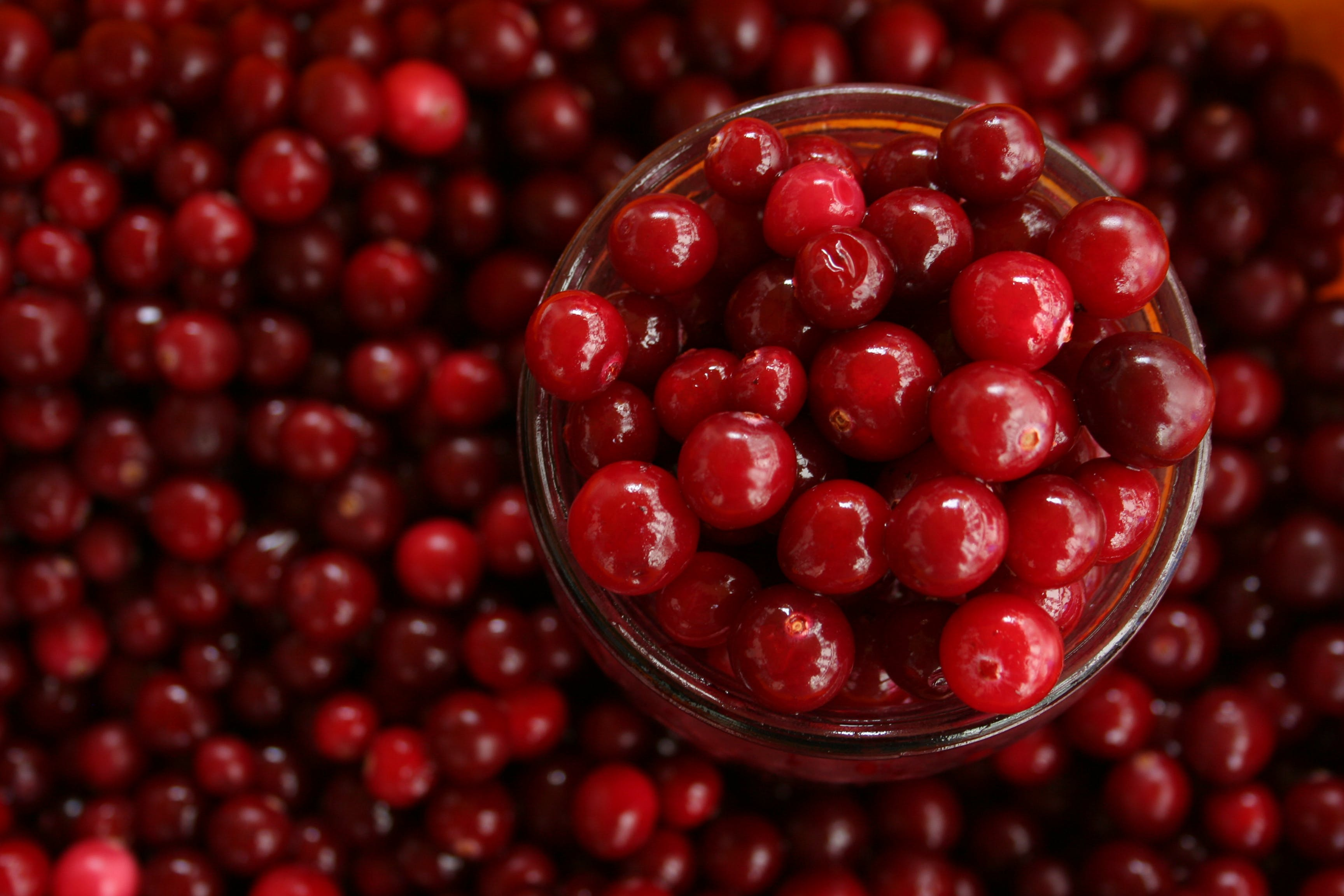 Cranberry juice ineffective against urine infections