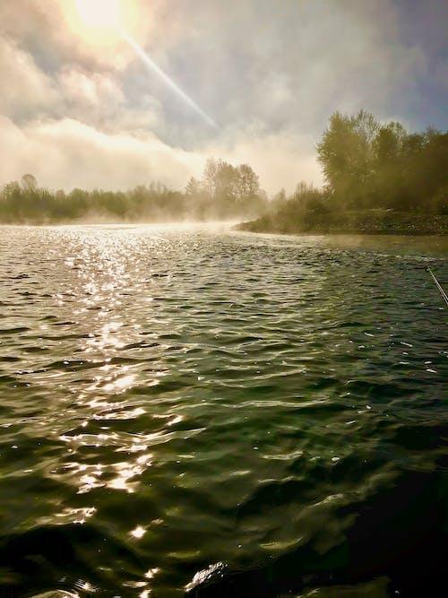 강, 불량 강, 오레곤의 무료 스톡 사진