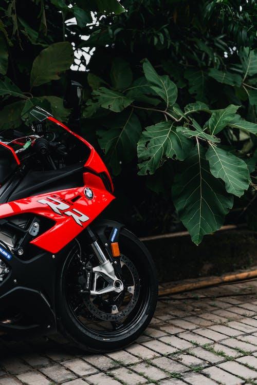 BMW, гоночний велосипед, двигун