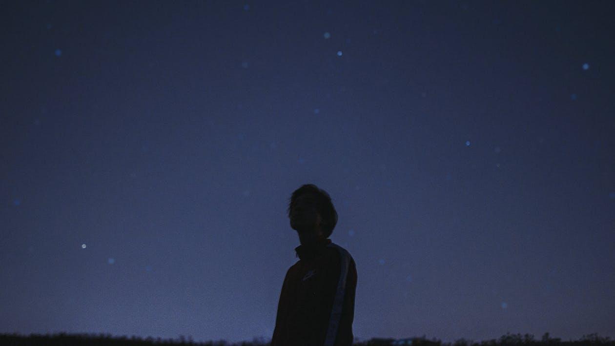 célébrités, étoiles, nuit