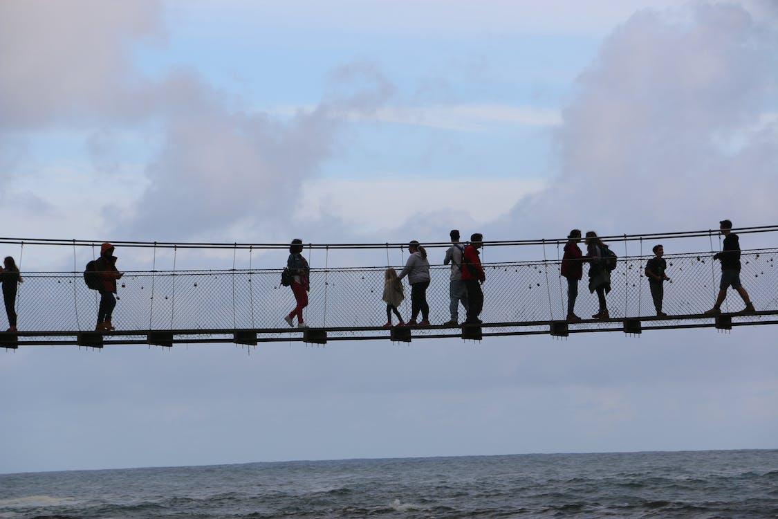 Free stock photo of bridge, chain bridge