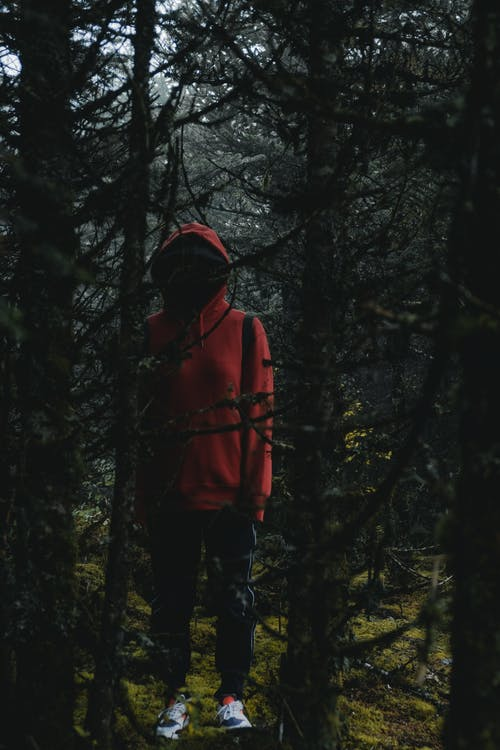 Person Wearing Red Hoodie Behind The Trees