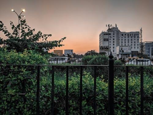 Gratis arkivbilde med #sunset #goldenhour #yellowsky #sky